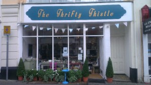 Thrifty Thistle (2)